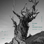 Stump_of_Prometheus_sample01-01